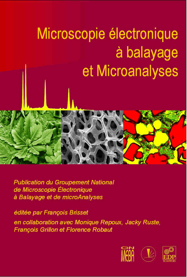 MEB & microanalyses